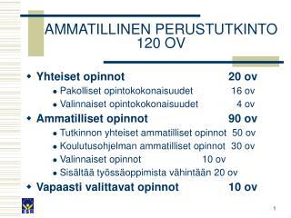 AMMATILLINEN PERUSTUTKINTO 120 OV