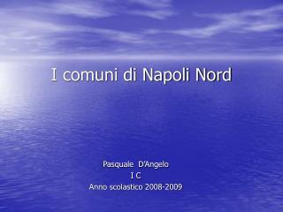 I comuni di Napoli Nord