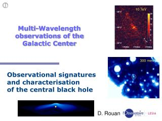 Multi-Wavelength observations of the Galactic Center