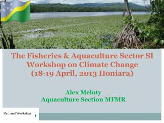 The Fisheries & Aquaculture Sector SI Workshop on Climate Change  (18-19 April, 2013 Honiara)