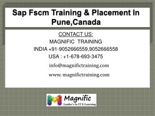 sap fscm online training in free server access