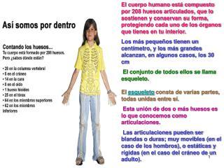 Los huesos del cuerpo humano presentan diferentes funciones como son : Sostén