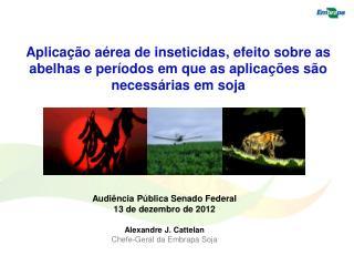Audiência Pública Senado Federal 13 de dezembro de 2012 Alexandre J.  Cattelan