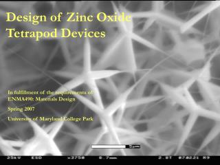 Design of Zinc Oxide Tetrapod Devices