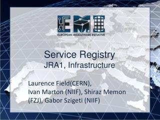 Service Registry JRA1, Infrastructure