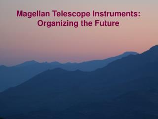 Magellan Telescope Instruments: Organizing the Future