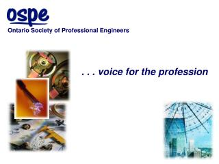 . . . voice for the profession