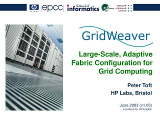 Large-Scale, Adaptive Fabric Configuration for Grid Computing