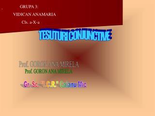 GRUPA 3:  VIDICAN ANAMARIA         Cls. a-X-a