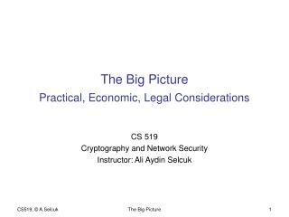 The Big Picture Practical, Economic, Legal Considerations