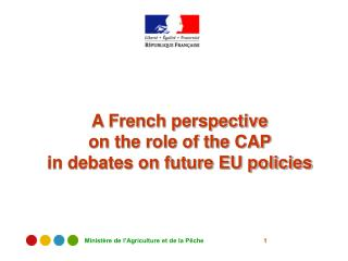 A French perspective  on the role of the CAP  in debates on future EU policies