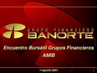 Encuentro Bursátil Grupos Financieros AMIB