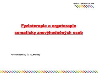 Fyzioterapie a ergoterapie somaticky znevýhodněných osob