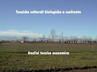 Tecniche colturali biologiche a confronto Analisi tecnico economica