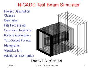 NICADD Test Beam Simulator