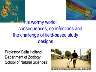 This wormy world: 			consequences, co-infections and the challenge of field-based study designs