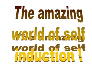 The amazing world of self induction !