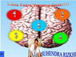 Lima Fakta Tentang Otak!!!!