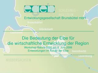 Entwicklungsgesellschaft Brunsbüttel mbH