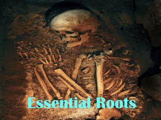 Essential Roots