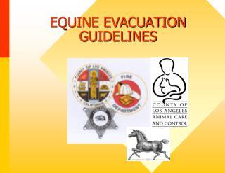 EQUINE EVACUATION GUIDELINES