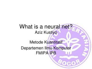 What is a neural net? Aziz Kustiyo