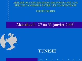 Marrakech - 27 au 31 janvier 2003