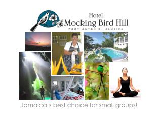 Jamaica's best choice for small groups!