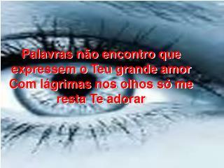Palavras não encontro que expressem o Teu grande amor Com lágrimas nos olhos só me resta Te adorar