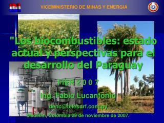 VICEMINISTERIO DE MINAS Y ENERGIA