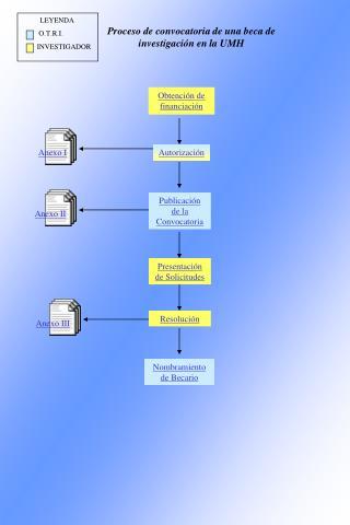 Proceso de convocatoria de una beca de investigación en la UMH