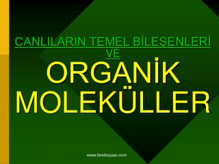 CANLILARIN TEMEL BİLEŞENLERİ VE ORGANİK  MOLEKÜLLER