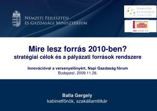 Balla Gergely kabinetfőnök, szakállamtitkár