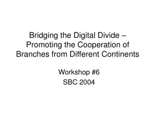 Bridging the Digital Divide – Promoting the Cooperation of Branches from Different Continents