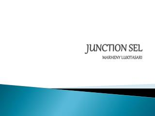 JUNCTION SEL MARHENY LUKITASARI