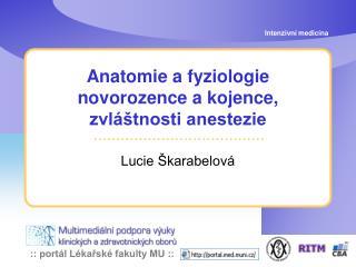 Anatomie a fyziologie novorozence a kojence, zvláštnosti anestezie