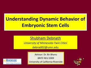 Understanding Dynamic Behavior of Embryonic Stem Cells