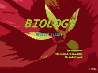 BIOLOGY Muscl e  Tissu e