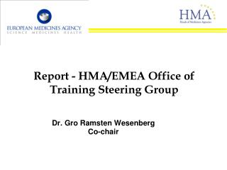 Report - HMA/EMEA Office of Training Steering Group