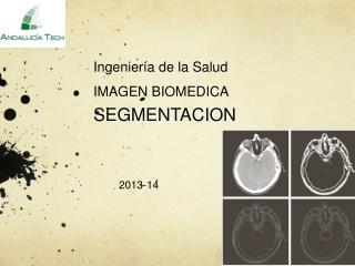 Ingeniería de la Salud IMAGEN BIOMEDICA  SEGMENTACION