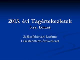 2013. évi Tagértekezletek 3.sz. körzet