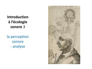 Introduction à l'écologie sonore  3 la perception sonore - analyse