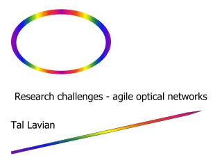 Research challenges - agile optical networks  Tal Lavian