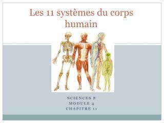 Les 11 systèmes du corps humain