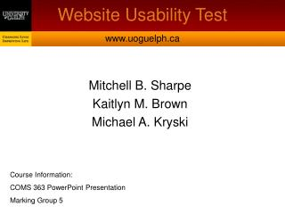 Website Usability Test