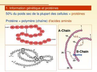 1. Information génétique et protéines