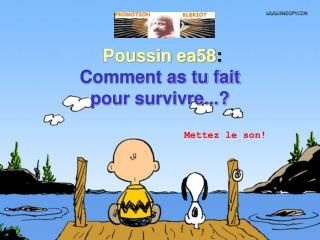 Poussin ea58 :  Comment as tu fait  pour survivre...?