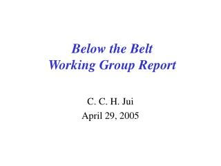 Below the Belt  Working Group Report
