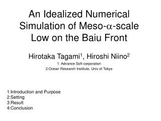 An Idealized Numerical Simulation of Meso- -scale Low on the Baiu Front