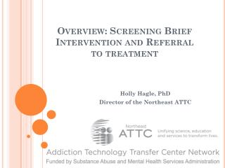 Overview: Screening Brief Intervention and Referral to treatment
